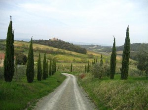 road-to-fattoria-voltrona